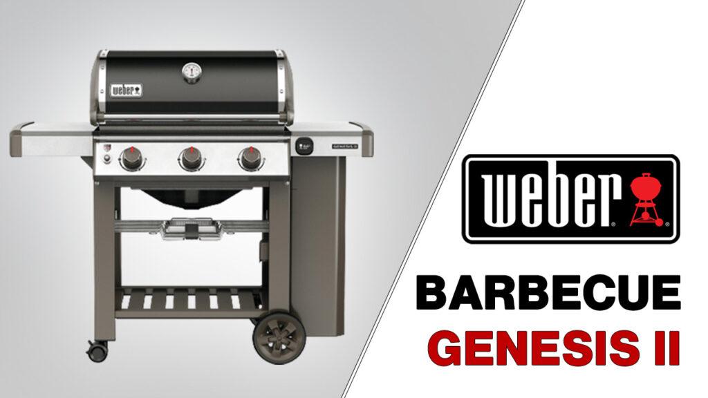 Miniature barbecue weber genesis 2création singulière agence web digitale